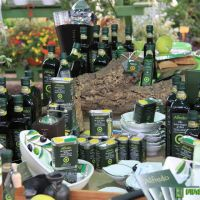 food-and-wine-in-the-green-2014-12