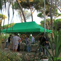 food-and-wine-in-the-green-2014-13