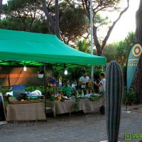 food-and-wine-in-the-green-2014-15