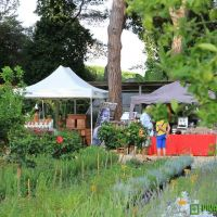 food-and-wine-in-the-green-2014-17